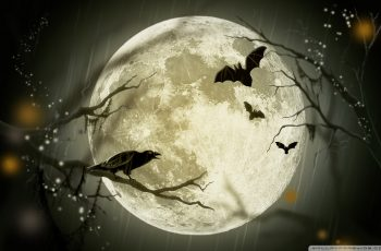 halloween-moon-wallpaper-1920x1200