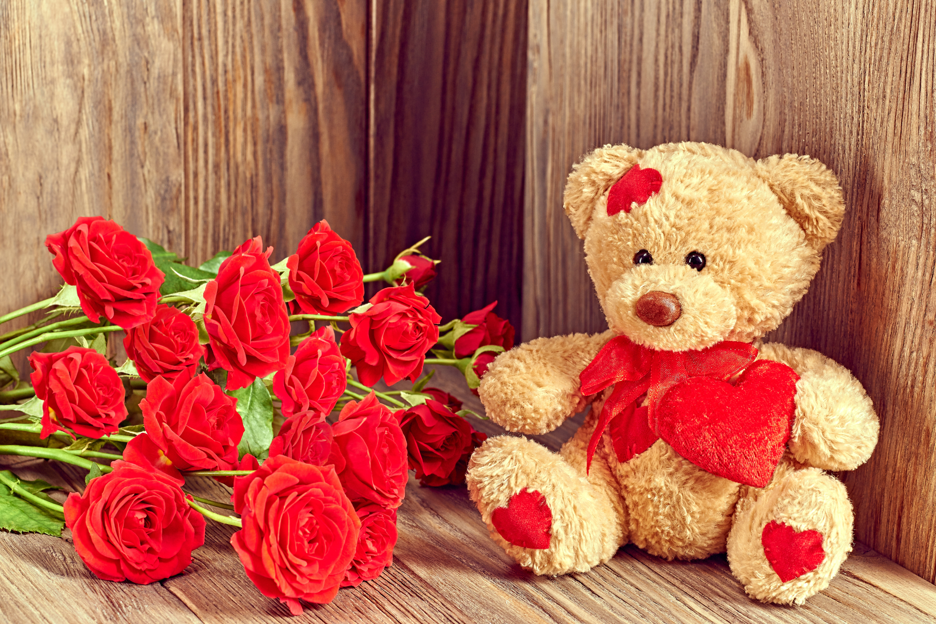 Teddy bear with pink roses - photo#38