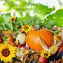 free thanksgiving background with pumpkin and fruits vegetable