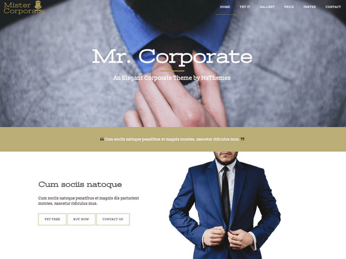 Free One page Business WordPress Theme - Mistercorporate