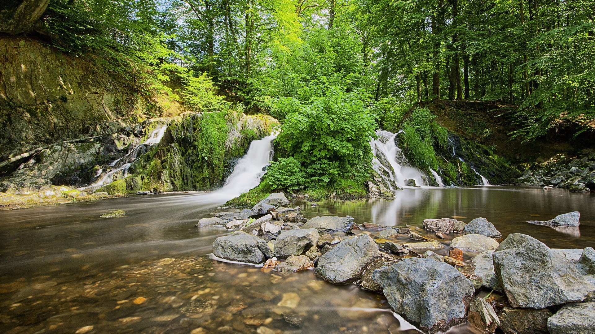 Forest Waterfalls Wallpapers HD