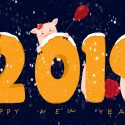 Happy New Year 2019 Winter Cute Pig HD Wallpaper 1920x1080