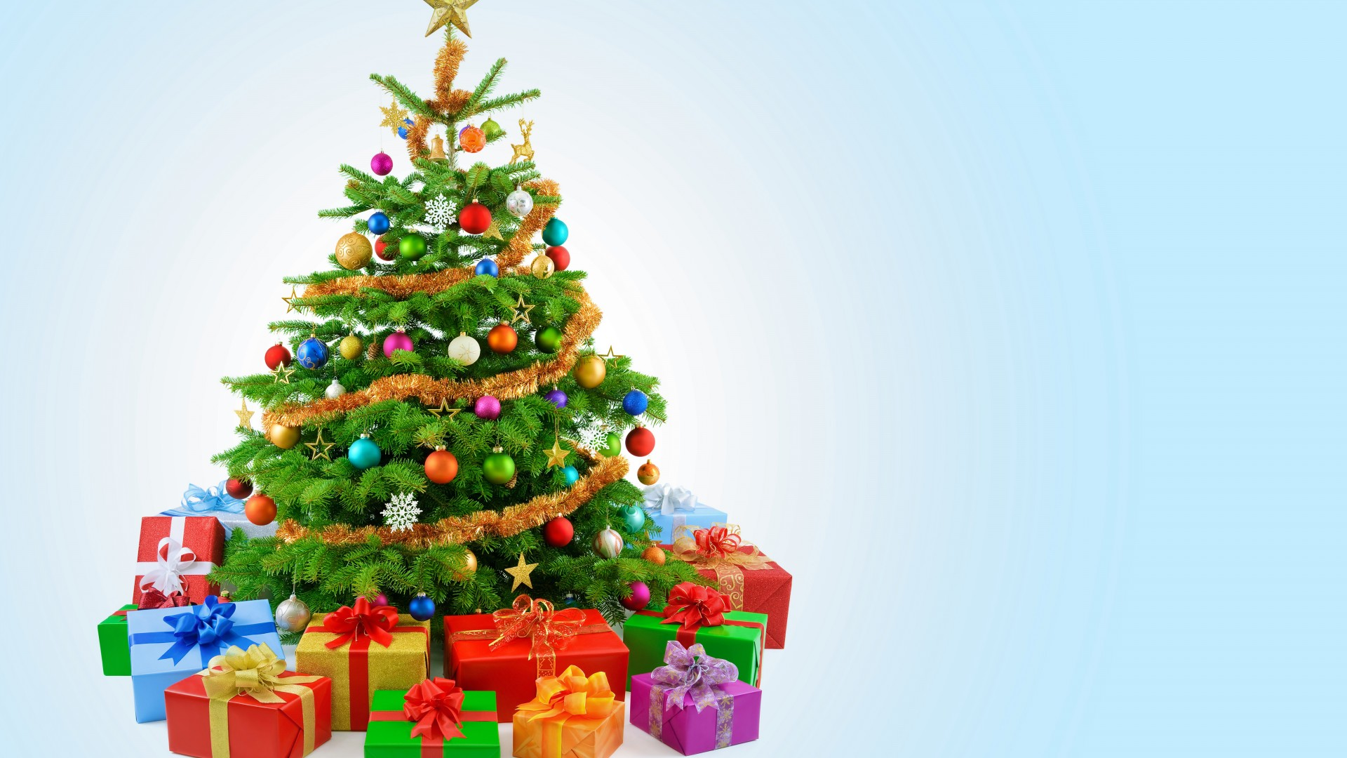 Christmas tree hd wallpaper 1080p